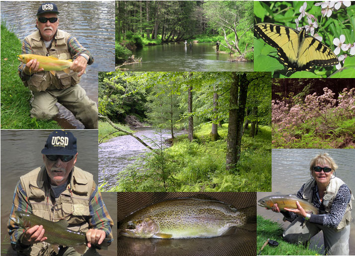 fly                           fishing in PA