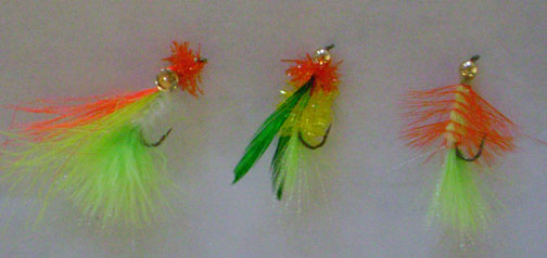 Peacok flies - great attractors to catch                   a bass
